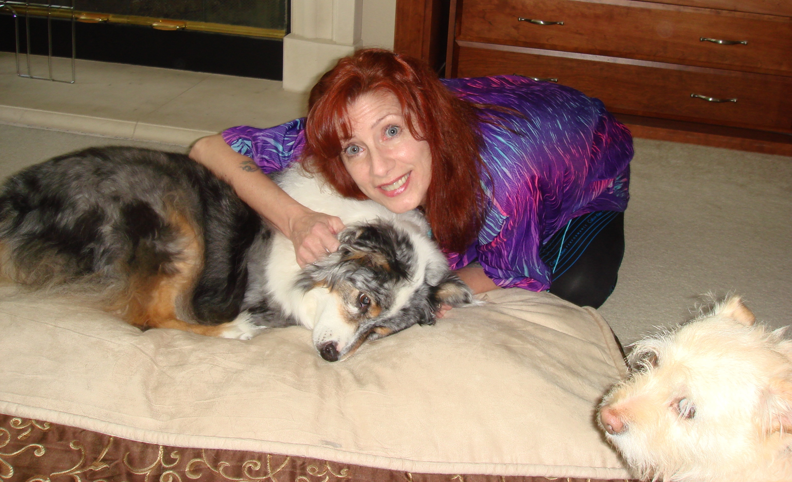 Katie, she's enjoying this and look there's Chloe sneaking in. Katie is a beautiful & fun lovin' Aussie. Lovely colors.