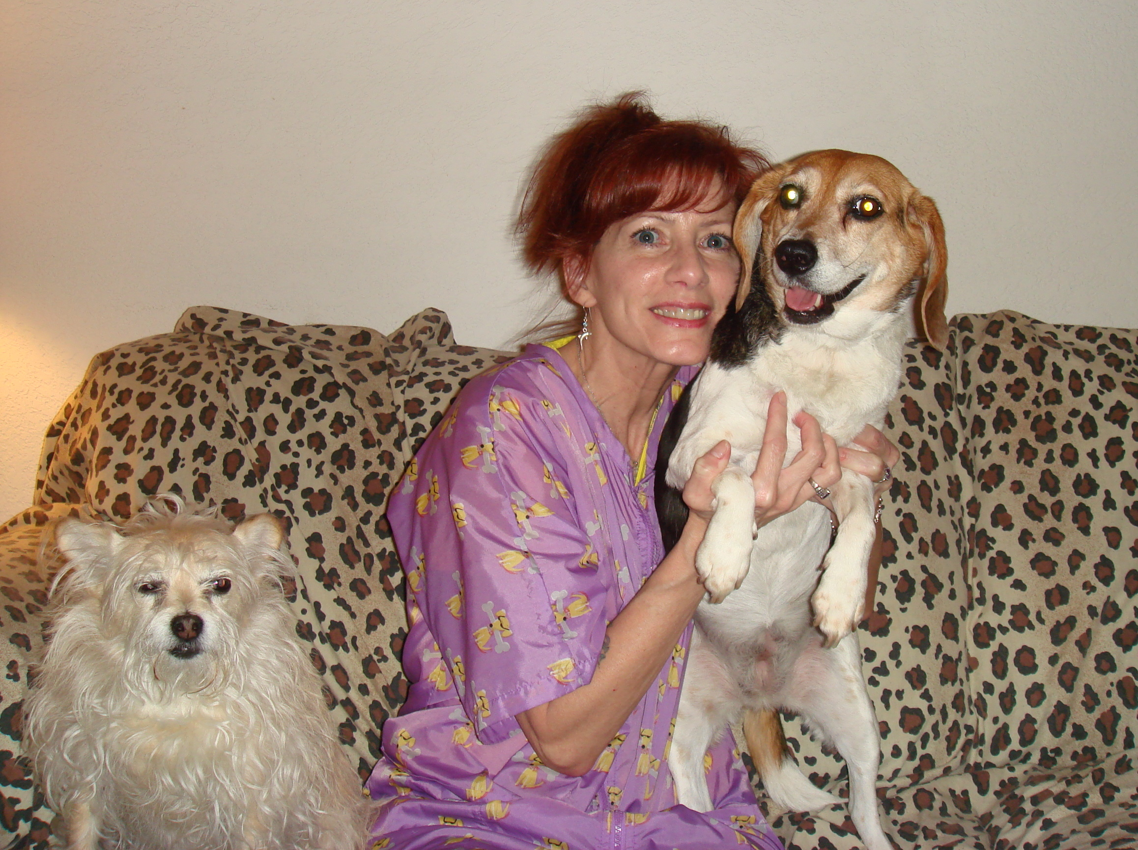Here's LUCY, a very curious & charming Beagle with lots of energy.  Bella wanted to get in the picture too.